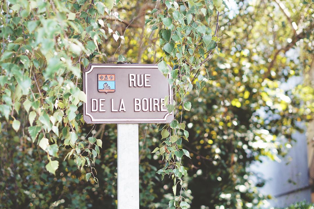 21_ile_behuard_angers_loire