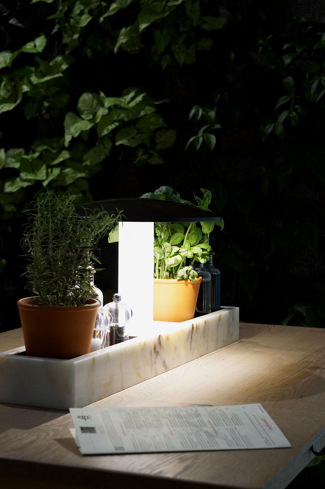 un d ner en italie gr ce vapiano l 39 autruche nantaise. Black Bedroom Furniture Sets. Home Design Ideas